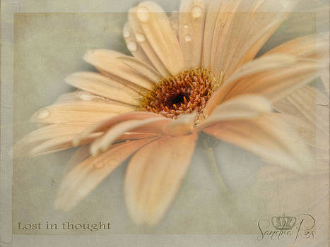 Lost in thought by Sandra Rossouw