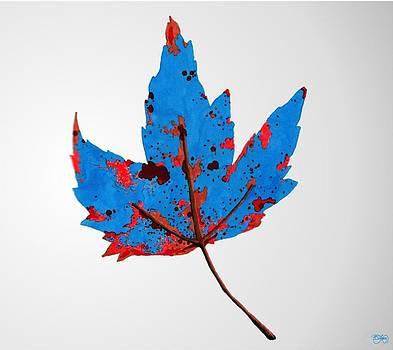 Loud Leaf by Ben Leary