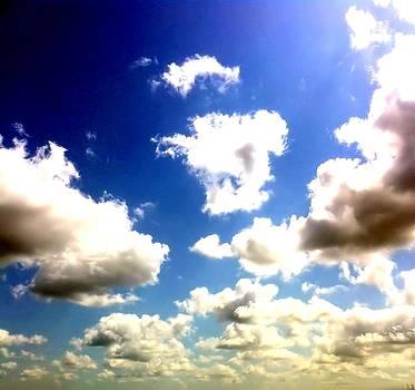 Louisiana Autumn Sky by Karen Conine