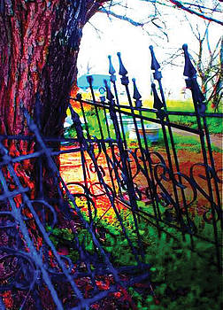Love Fence 1 by Valera Ainsworth