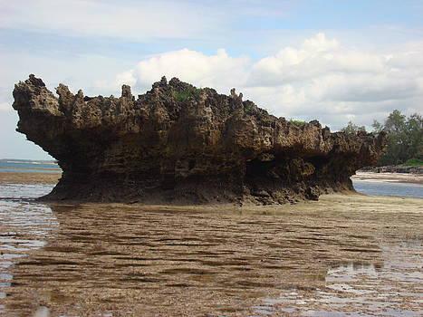 Low tide by Carol Evans