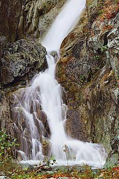 Lower Falls by Daryl Hanauer