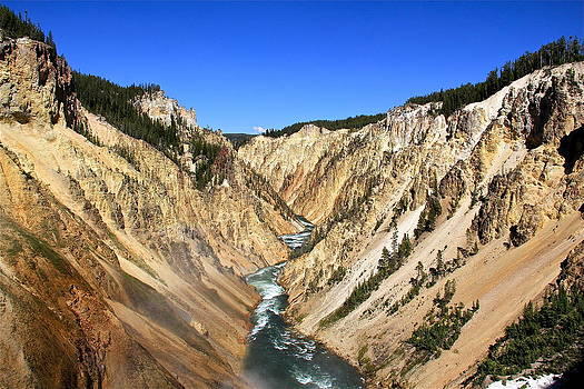Lower Falls of Yellowstone by Lindsey Cockrum