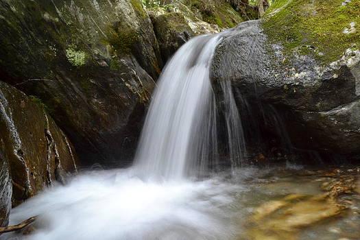 Lower Preston Brook Falls by Wendell Ducharme Jr