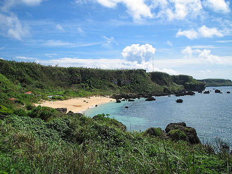 Lush Green Coastline With Tropical Beach by Ippei Naoi
