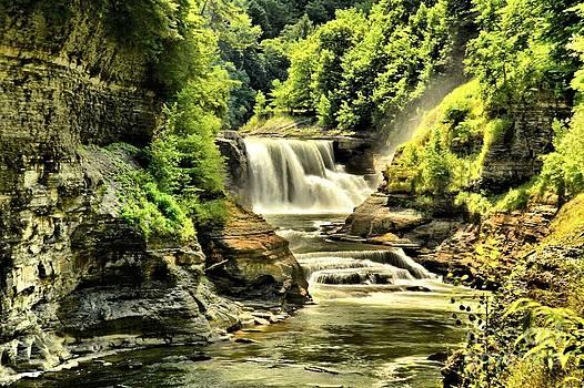 Adam Jewell - Lush Lower Falls