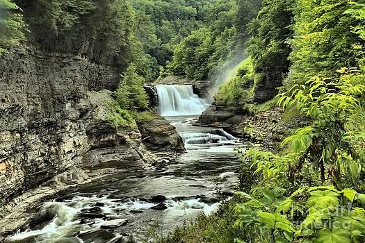 Adam Jewell - Lush Waterfall