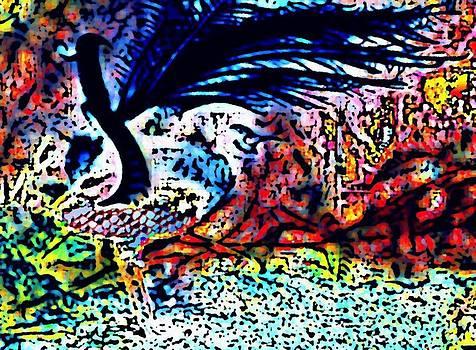 Lyrabird by Rod Saavedra-Ferrere