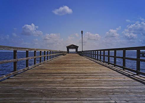 Macdill Fishing Pier by Lawrence Ott