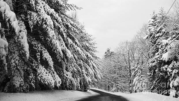 Maine Winter Backroad by Christy Bruna