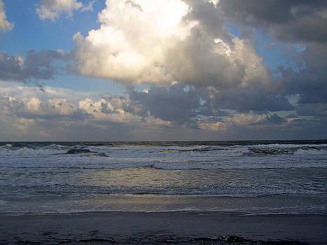 Patricia Taylor - Majestic Sea