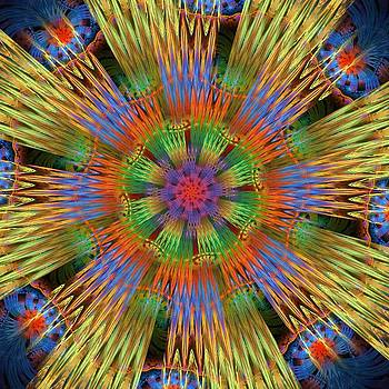 Mandala 516 by Rick Chapman