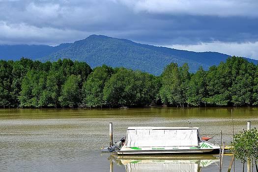 Mangrove River by Ku Azhar Ku Saud