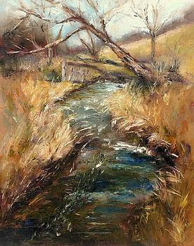 March Runoff by Wendie Thompson
