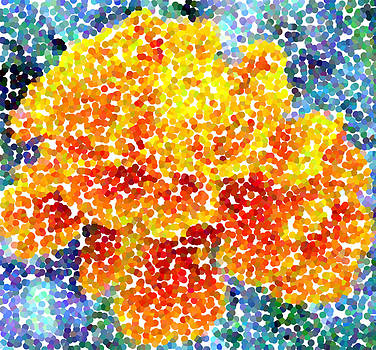 Marigold by Gypsy Chic