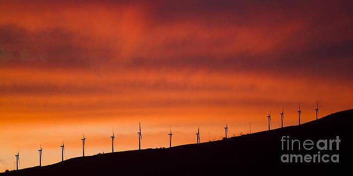 Maui Wind Power by Dustin K Ryan