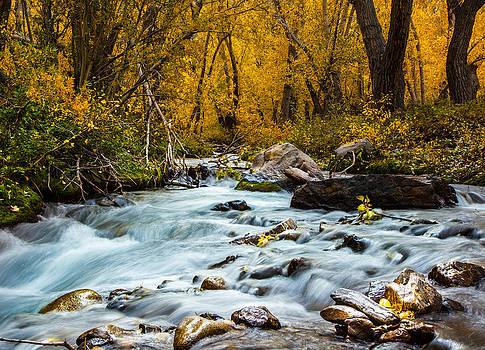 McGee Creek Fall Splendor by Jim Ross