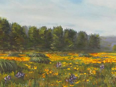 Meadow by Dahlstrom
