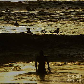 Linda Knorr Shafer - Meditari - Gold