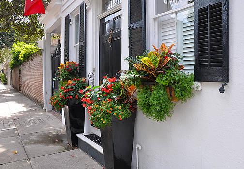 Meeting Street Window Box 2 by Lori Kesten