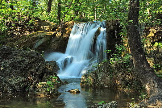 Melody Of The Falls by Terry Hollensworth-Rutledge