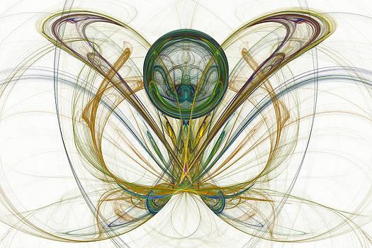 Metamorphosis by Rick Chapman