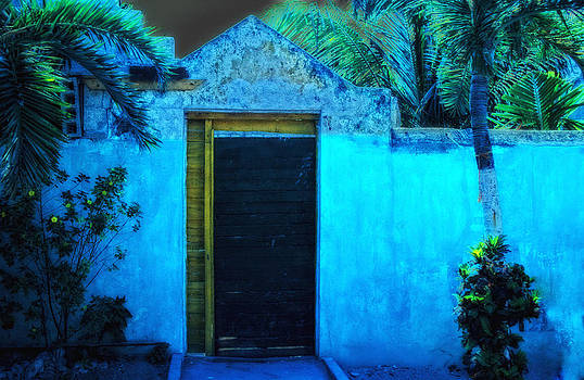 Mexacali Night by Carol Kinkead