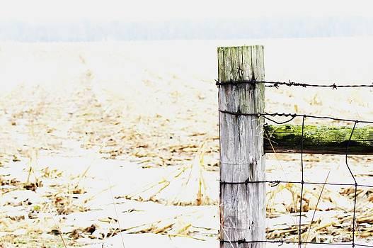 Michigan fence by Kati Stutsman