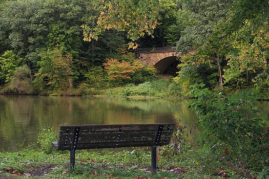 Mid-September Evening at the Park by Donna Bosela