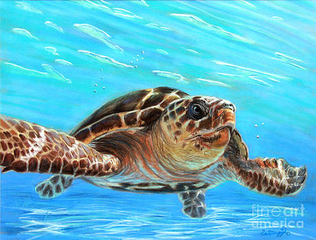Midday Swim by Deb LaFogg-Docherty