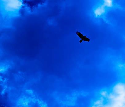 Midnight Flight by Walt Stoneburner