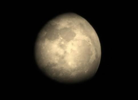 Midnight Moon by Aliesha Fisher
