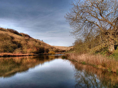 Millington Reflections by Sarah Couzens