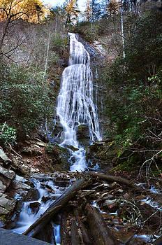 Mingo Falls by Michael Austin
