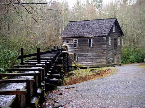 Marty Koch - Mingus Mill