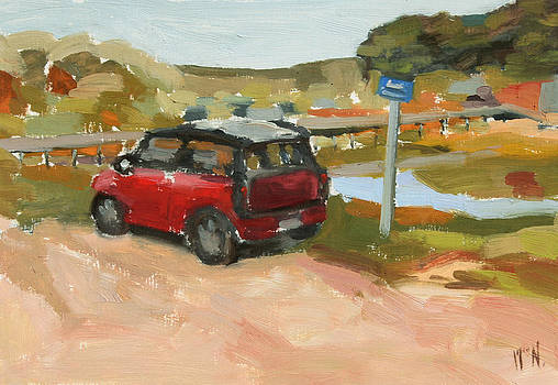 Mini on the Cape by William Noonan