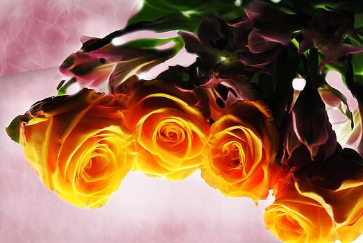 Cindy Boyd - Mini Orange Roses on Pink