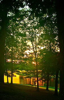 Mississippi Sunset by Frank SantAgata