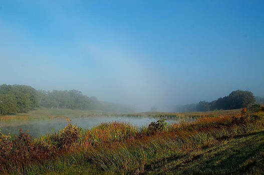 Mist On The Pond by Cindy Rubin