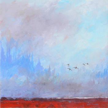 Misty Landing by David  Maynard