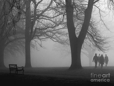 Misty Morning in the Park by Karin Ubeleis-Jones