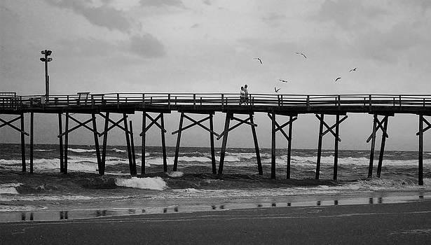 Misty Pier Walk by DM Werner