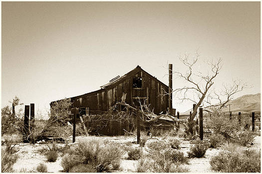 Mojave Real Estate by Shane Rees