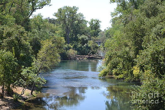 Mokelumne River by Bob Rowell