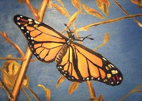 Monarch Butterfly by Laura Evans