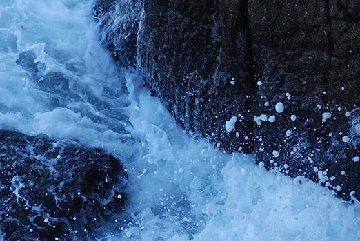 Monterey Ca by Kenji Lauren Tanner