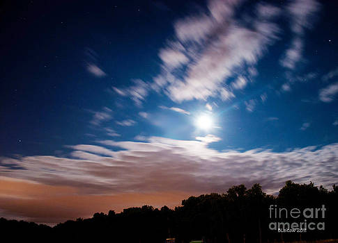 Moon Behaving Badly by Brenda Leitow