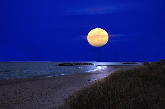 Randall Branham - Moon on the Beach