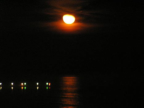 Moon Rise by Diane Frick