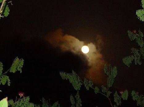 Xafira Mendonsa - Moon Watch